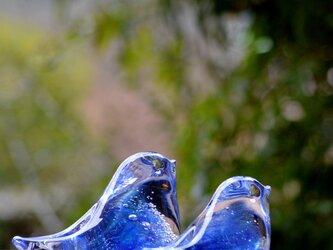 ブルーパープルの小鳥ペアaの画像