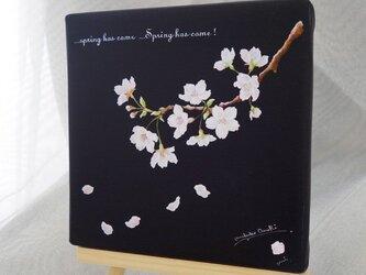 sakura (ジクレー版画)の画像