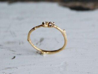branche 小さい花のリングの画像