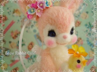 Easter Bunnyの画像