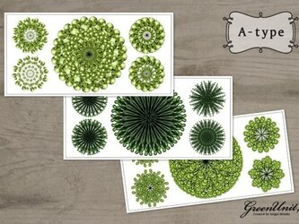 Green Flowers (3set) A-typeの画像
