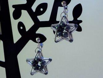 スターフラワーのイヤリングの画像