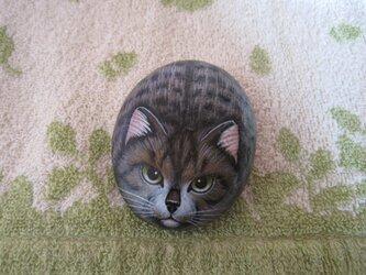 石猫   「100万回・・・の とらねこ」の画像