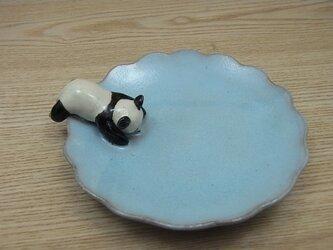 水青爆睡大熊猫輪花小皿−Aの画像