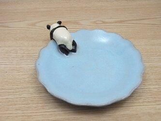 水青爆睡大熊猫輪花小皿−Bの画像