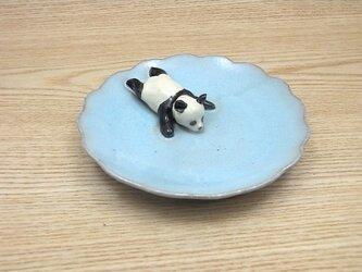 水青爆睡大熊猫輪花小皿−Cの画像