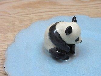 水青爆睡大熊猫輪花小皿−Dの画像