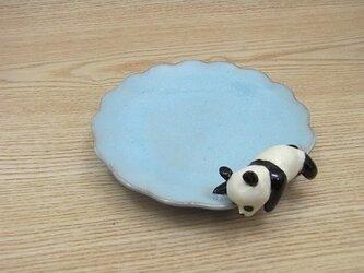 水青爆睡大熊猫輪花小皿−Eの画像