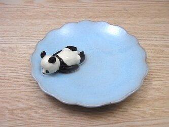 水青爆睡大熊猫輪花小皿−Fの画像