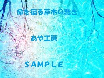 2015.03 CG画集38(POSTCARD)の画像