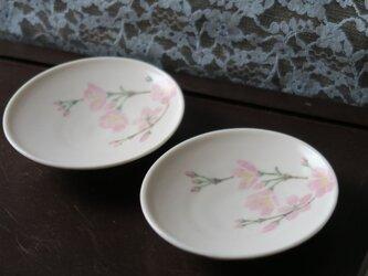 桜文 豆皿の画像