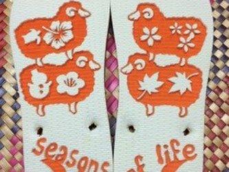 羊と過ごす春夏秋冬の画像