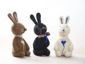 3色ウサギの画像