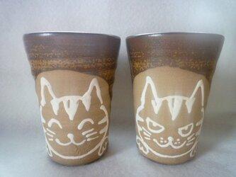 陶器 ビアマグ 猫の画像