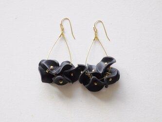 black flowersの画像