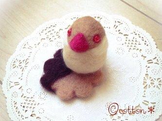 【M様オーダー】シナモン文鳥onチョコレートクッキーの画像