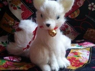 九尾の狐の画像