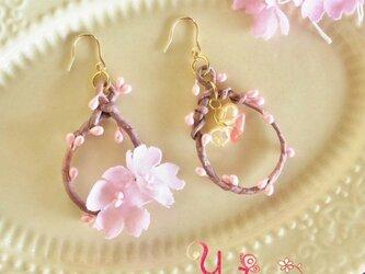 桜の小枝ピアス(k14gf)の画像