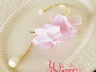 コットンパールと桜のイヤーフックの画像