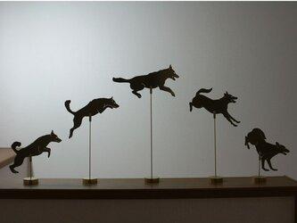 Jumping Dog Brass Objet 5点セットの画像