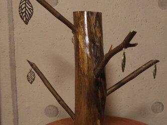 枝えんぴつの木の画像