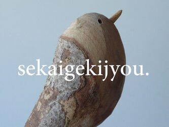 bird 〜 流木の小鳥・Peの画像