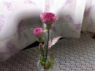 野アザミ (花器付)の画像