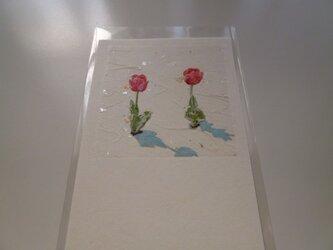 赤いチューリップ(ポストカード)の画像