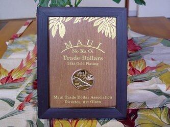 Hawaii-Maui Coin Disply3の画像