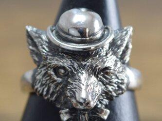 紳士の嗜み 【リング】Mr.FOX:R-55:Size03~15の画像
