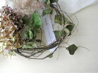 紫陽花とヘデラのwreath.antiqueの画像