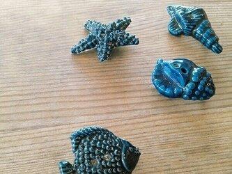 陶器釦 ブローチ(貝殻)の画像