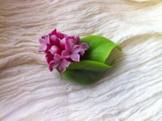 沈丁花のブローチの画像