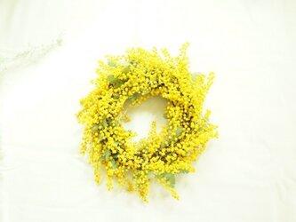 ミモザ wreathの画像