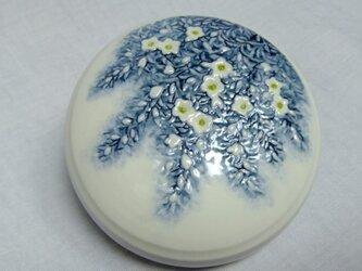 香合 雪柳 の画像
