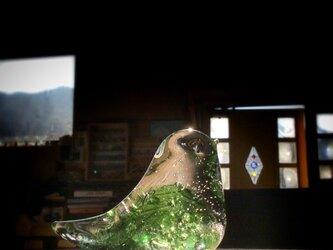 ライムグリーン×モスグリーンの小鳥 aの画像