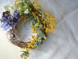 庭に咲く季節のwreath.marの画像