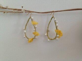 春の訪れ〜黄花のピアスの画像
