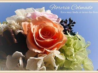 Buenas dias(送料無料2点以上お買い上げ時)の画像