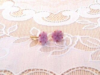 桜ピアス(3セット)の画像