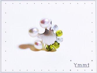 ミミカザリ(パールG)の画像