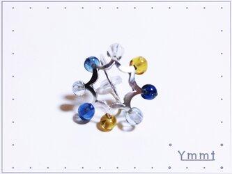 ミミカザリ(M)の画像