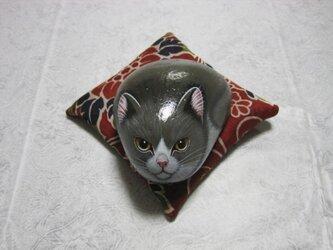 石猫  「猫不動」の画像