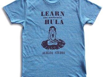 learn hulaの画像
