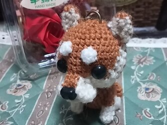 編みぐるみ雑貨<柴犬>の画像