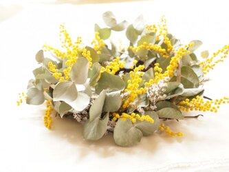 ミモザ ユーカリ wreathの画像