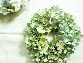 秋色紫陽花 wreathの画像