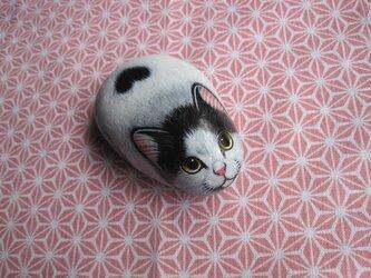 石猫  「富士額」の画像