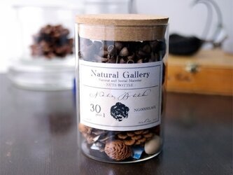 ナッツボトル・30種類の木の実の標本【Ver.3】の画像