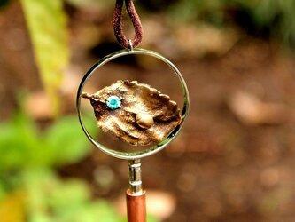 昆虫学者のための虫メガネ ネックレス てんとう虫の画像
